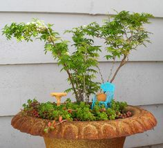 New Miniature Garden Trees for the New Hobby, Part I