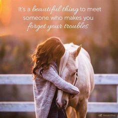 Horse Training Tips, Horse Tips, Dude Ranch Vacations, Riding Holiday, Reining Horses, Horse Barns, Horse Horse, Horse Stalls, Horse Riding