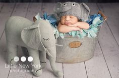 Hey, I found this really awesome Etsy listing at http://www.etsy.com/listing/101498581/free-shipping-baby-elephant-newborn-baby