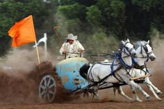 Kevin Webb steers a team of horses as he participates in a chariot race during  the Pawnee Bill Wild West Show in Pawnee, Oklahoma on Saturday,  June 23, 2012.  Photo by Jim Beckel, The Oklahoman