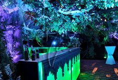 Midsummer-Night-Canopy and Bar