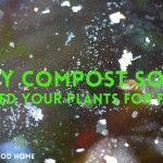 Compost Soup