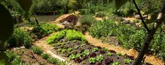 la ferme Permaculture, Agriculture, Deco Nature, Beaux Villages, Vineyard, Gardening, Outdoor, Gardens, Backyard Farming