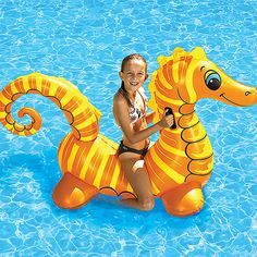 Take a look at the Poolmaster event on zulily today!
