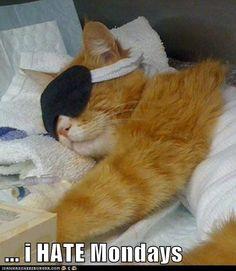I hate monday