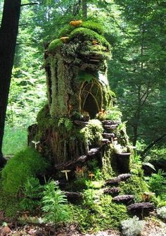Tree stump house, fairy house, nymph house, moss covered tree trunk made into house in forest