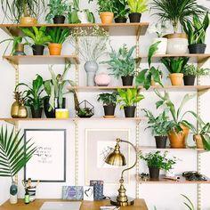 Green Home Office Inspiration · Workspace Design · Creative Studio · Artist Desk · Plant Decor Interior Plants, Interior Design, Modern Interior, Studio Interior, Design Interiors, Interior Garden, Home Office Inspiration, Garden Inspiration, Interior Inspiration