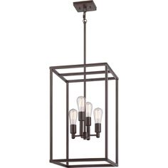 Quoizel 'New Harbor' 4-light Western Bronze Cage Chandelier (Incandescent, Bronze, Chandelier), Brown (Metal)