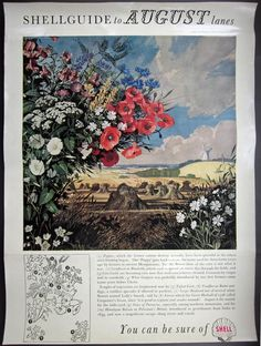 1. Edith & Rowland Hilder [SHELL Educational Posters]: 1950 POSTER : SHELL Guide to AUGUST Lanes