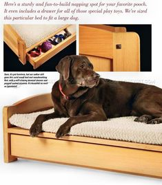 Dog Bed Plans - Woodworking Plans