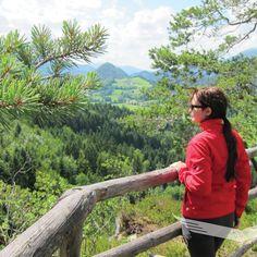 Wandertipp: Bannholzmauer 🦅 Die steile Felsklippe der Bannholzmauer ist in die Wälder des Wurbauerkogels eingebettet und ragt als attraktive Aussichtskanzel über die Baumwipfel hinaus.  #nationalparkkalkalpen #tourderwoche  #entdecken #outdooradventures #findyourpark #nationalparks #neverstopexploring #wanderlust  #mountainlovers   #bergliebe #mustsee  #weekendtrip #travelasmuchasyoucan #panorama Villa, Nationalparks, Wanderlust, Abs, Nature, Travel, Wilderness, Tours, Alps