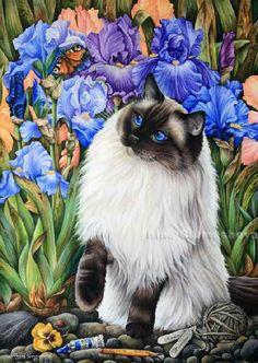 Ragdolls Amongst The Irises Irina Garmashova Cats