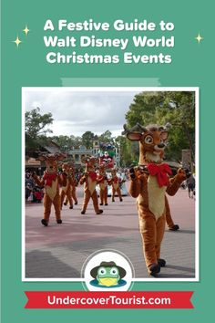 Guide to Walt Disney World Resort Christmas Events Disney World Christmas, Christmas Events, Holidays And Events, Disney World Resorts, Walt Disney World, Holiday Travel, Holiday Trip, Disney Races, Disney World Tips And Tricks