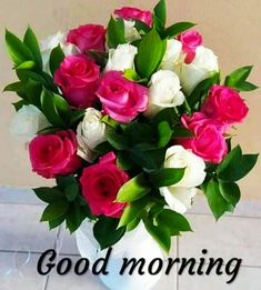 Top Good Morning Images, Good Morning Images For Whatsapp, Best Good Morning Images, Good Morning Quotes Good Morning God Quotes, Good Morning Beautiful Pictures, Good Morning Beautiful Images, Good Morning Happy Sunday, Good Morning Cards, Good Morning Images Hd, Good Morning Gif, Good Morning Picture, Good Morning Greetings