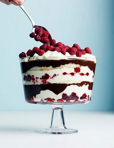 I always make a trifle very similar to this for christmas lunch dessert (lovely photo by Roland Persson)