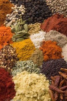 Indian cuisine thrives on the variety of spices. - Indian cuisine thrives on the variety of spices. Comida India, India Food, India India, Delhi India, Spices And Herbs, Kraut, Earth Tones, Indian Food Recipes, Vegetarian Recipes