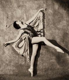 Maudelynn's Menagerie : Photo