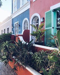 #📷 @mariechardin ・・・ Little paradise 🌿 #dewaterkant #capetown #southafrica #neighborhood #colors #realestate #property #inspo #garden…