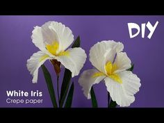 How to make crepe paper flowers | Crepe paper Iris | Craft tutorials - YouTube
