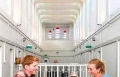 Jailhouse Accommodation in Christchurch, New Zealand - Find Cheap Hostels and Rooms at Hostelworld.com