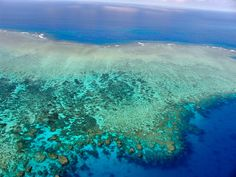 Great Barrier Reef. What colour.
