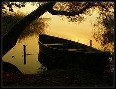 """Golden morning"" Sajno Lake, Poland © Janusz Kajzer (ghost_dog72)"
