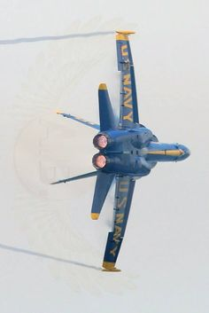 Luxury Jets, Michigan Usa, Angel Pictures, Traverse City, Blue Angels, Hornet, Us Navy, Fighter Jets, Pilot