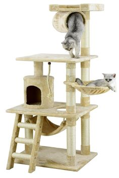 211 Best Cats Images Cats Cat Furniture Pets