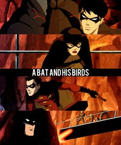 A Bat and his Birds (Young Justice)