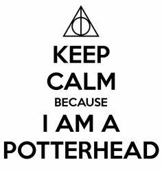 20 modi per scoprire se sei un vero Potterhead! Harry James Potter, Harry Potter Journal, Arte Do Harry Potter, Cute Harry Potter, Theme Harry Potter, Harry Potter Drawings, Harry Potter Pictures, Harry Potter Tumblr, Harry Potter Room
