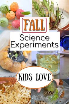Check out these awesome fall science experiments for kids! Lots of nature study included, which I love! Educational Activities For Preschoolers, Creative Activities For Kids, Autumn Activities For Kids, Fall Crafts For Kids, Math For Kids, Science For Kids, Fall Preschool, Nature Activities, Autumn Crafts