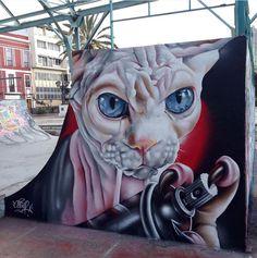 Ceser, Spain, 2017