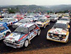 Rally heaven