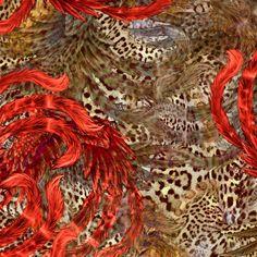 Animal Prints + Phoenix