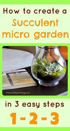 Succulent Micro Garden by The Sweet Spot Blog http://thesweetspotblog.com/succulent-micro-garden/