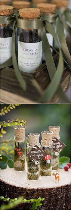 37 Useful Green Wedding Favors Awesome Unique Glass Tubes Moss enchanted forest wedding ideas Homemade Wedding Favors, Wedding Gifts For Guests, Cheap Wedding Invitations, Unique Wedding Favors, Wedding Party Favors, Bridal Shower Favors, Unique Weddings, Wedding Ideas, Diy Party