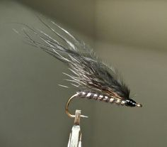 Squirrel Tail and Black Marabou streamer pattern