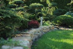 Bonsai ogród Bonsai, Stepping Stones, Sidewalk, Park, Outdoor Decor, Home Decor, Stair Risers, Decoration Home, Room Decor