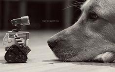 Wall-E Photo Art Print Golden Retriever Dog Robot - 8 x 12. $28.00, via Etsy.