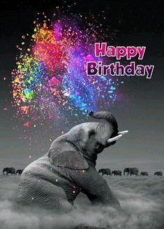 Happy Birthday Auntie, Nephew Birthday Quotes, Best Birthday Quotes, Birthday Wishes Funny, Happy Birthday Messages, Happy Birthday Quotes, Happy Birthday Images, Happy Birthday Greetings, Birthday Cards