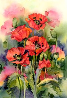 Original watercolour painting of poppies Watercolor Poppies, Watercolor Print, Watercolour Painting, Watercolors, Poppies Painting, Arte Floral, Oriental Flowers, Flower Art, Poppy Flower Painting