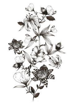 Duy Anh Nhan Duc | The Secret Garden