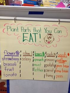 Parts of the plant you can eat. Plan to create a flip book. Cut and paste examples inside.