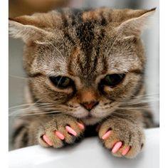 Pink nails @Susan Day Duffy
