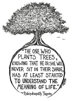 """""""The one who plants trees, knowing that they will never sit in their shade, has at least started to understand the meaning of life."""" - Tagore - art by Rick Frausto Tree Of Life Quotes, Tagore Quotes, Tree Of Life Painting, Rabindranath Tagore, Plants Quotes, Monday Inspiration, Motivation Inspiration, Ink Illustrations, Illustration Meaning"""