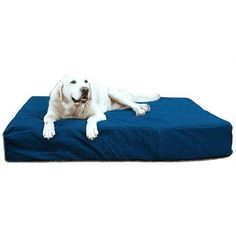 8' BioMedic Memory Foam Dog Pillow Size: Extra Large, Fabric: Faux Leather - Black * Unbelievable dog item right here! : Pet dog bedding