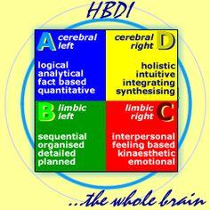Human Brain Dominance Instrument | In 1978, Ned Herrmann created the Herrmann Brain Dominance Instrument ...