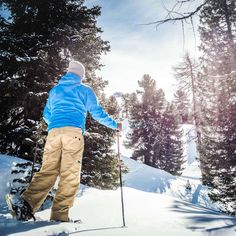Gastein has so many winter activities to offer - action is guaranteed! Winter Activities, Mountain, Action, Blog, Life, Ski, Group Action, Blogging