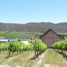 Fine Wine Tour At Hemel-en-Aarde Valley - Explore Sideways Pinot Noir, Fine Wine, Heaven On Earth, Red Wine, Vineyard, Tours, Explore, Gallery, Outdoor