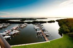 Vacation rental in Hutchinson Island from VacationRentals.com! #vacation #rental #travel Hutchinson Island, Vacation Rental Sites, Condo, Places To Visit, Ocean, River, Outdoor, Outdoors, The Ocean